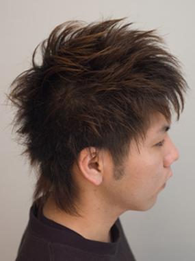 hairstyle-arts.com